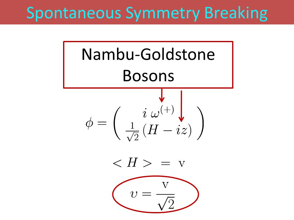 Spontaneous Symmetry Breaking Nambu-Goldstone Bosons