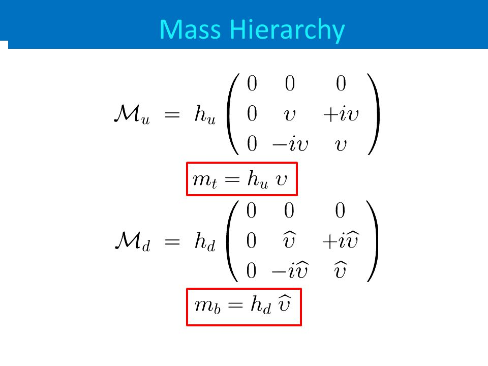 Fermion Mass Matrix Mass Hierarchy
