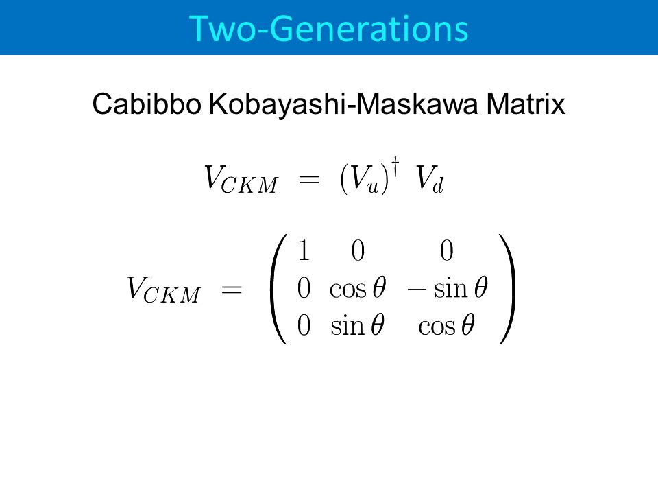 Two-Generations Cabibbo Kobayashi-Maskawa Matrix
