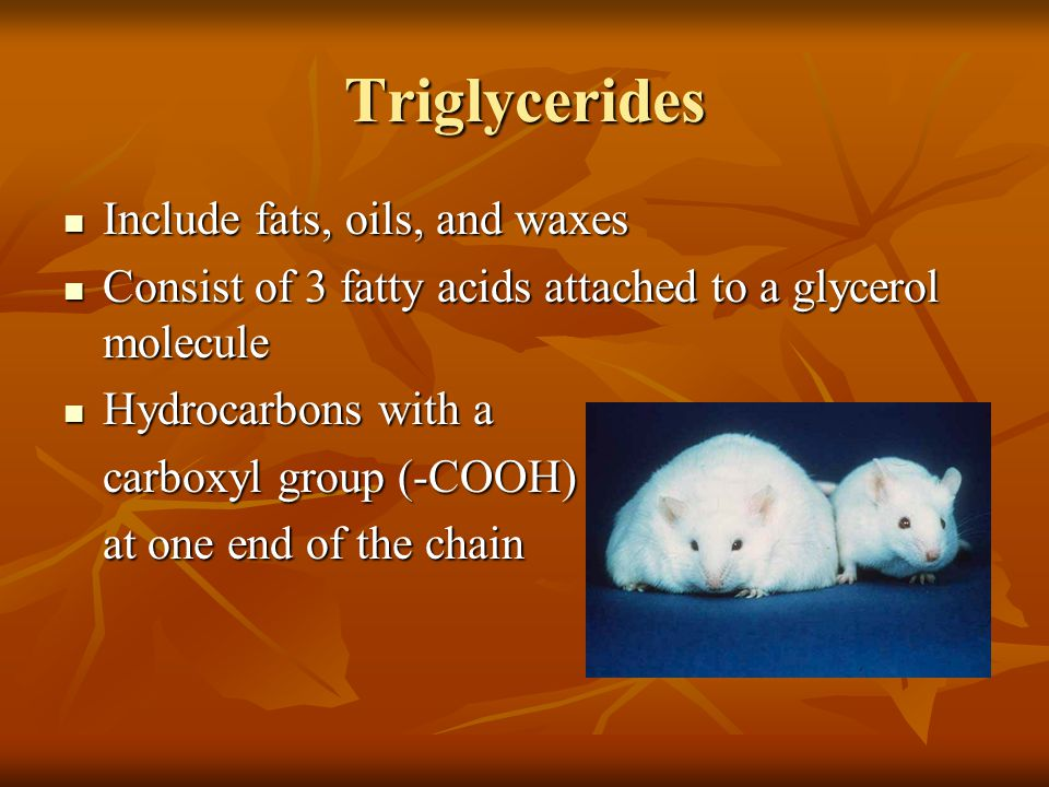 Triglycerides Include fats, oils, and waxes Include fats, oils, and waxes Consist of 3 fatty acids attached to a glycerol molecule Consist of 3 fatty acids attached to a glycerol molecule Hydrocarbons with a Hydrocarbons with a carboxyl group (-COOH) at one end of the chain