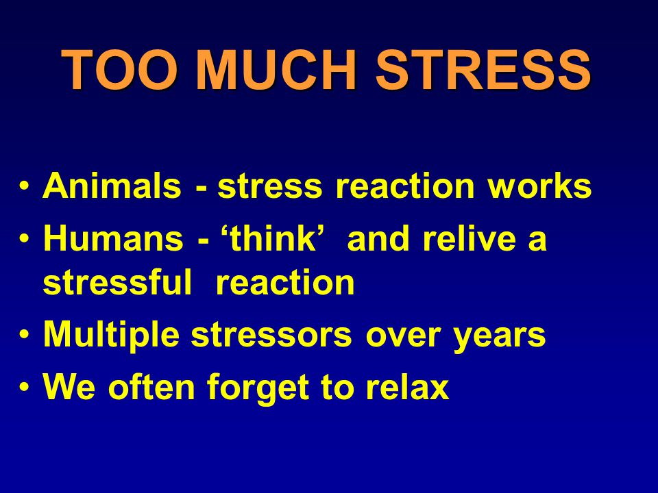 TOO MUCH STRESS Animals - stress reaction works Humans - 'think' and relive a stressful reaction Multiple stressors over years We often forget to relax