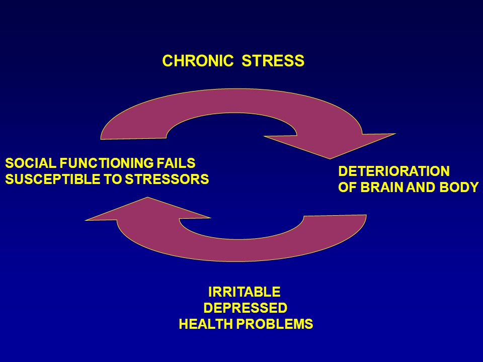 CHRONIC STRESS DETERIORATION OF BRAIN AND BODY IRRITABLE DEPRESSED HEALTH PROBLEMS SOCIAL FUNCTIONING FAILS SUSCEPTIBLE TO STRESSORS