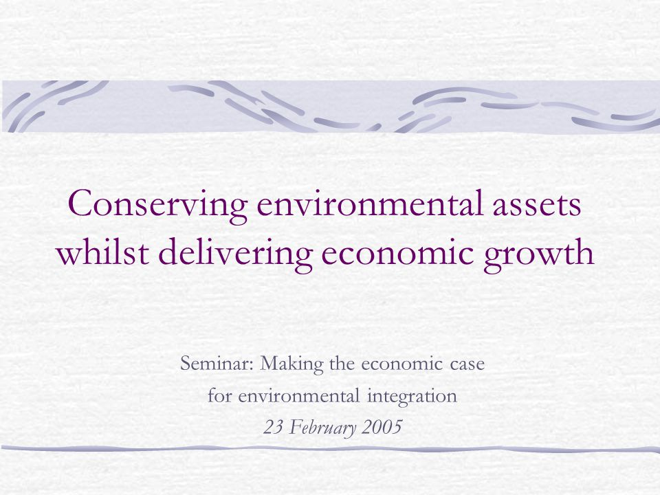 Conserving environmental assets whilst delivering economic growth Seminar: Making the economic case for environmental integration 23 February 2005