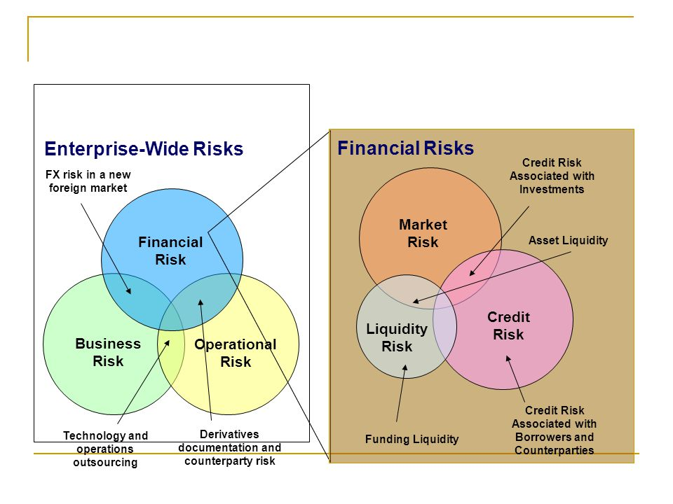 Business Risk Operational Risk Financial Risk Technology and operations outsourcing Derivatives documentation and counterparty risk FX risk in a new foreign market Enterprise-Wide Risks Financial Risks Market Risk Liquidity Risk Credit Risk Credit Risk Associated with Investments Credit Risk Associated with Borrowers and Counterparties Funding Liquidity Asset Liquidity