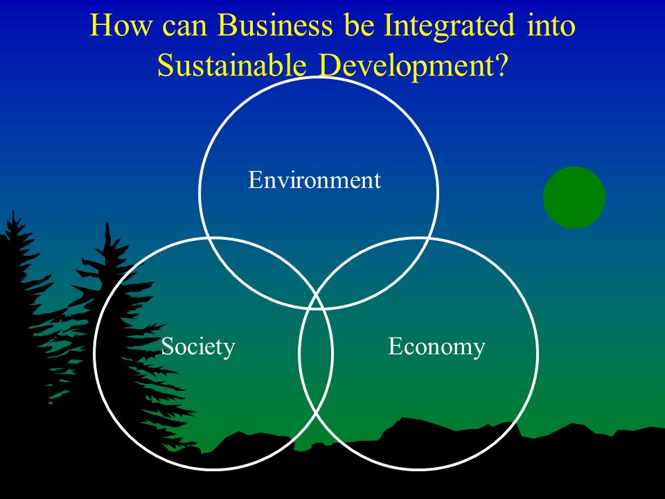 How can Business be Integrated into Sustainable Development Environment EconomySociety