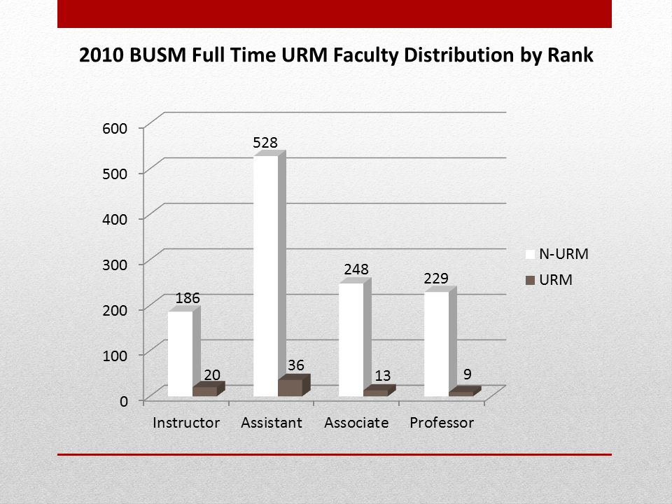 2010 BUSM Full Time URM Faculty Distribution by Rank
