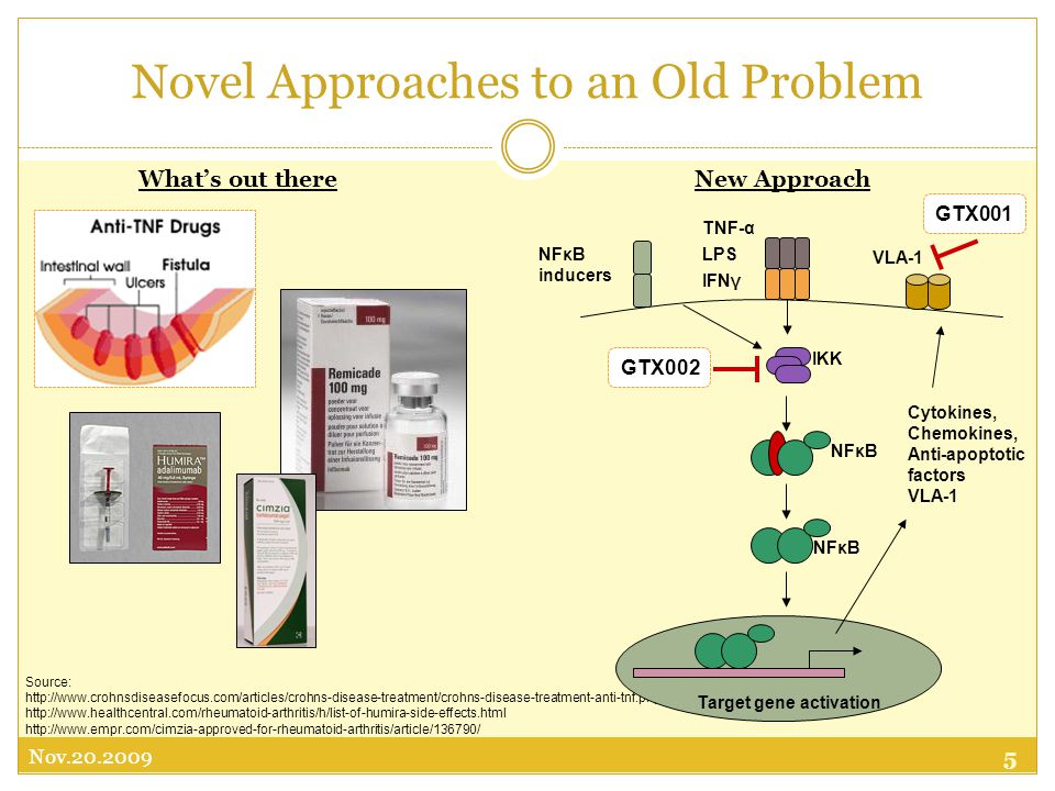 5 Nov Source: Novel Approaches to an Old Problem Cytokines, Chemokines, Anti-apoptotic factors VLA-1 GTX002 VLA-1 TNF-α LPS IFNγ IKK NFκB Target gene activation GTX001 NFκB inducers What's out thereNew Approach