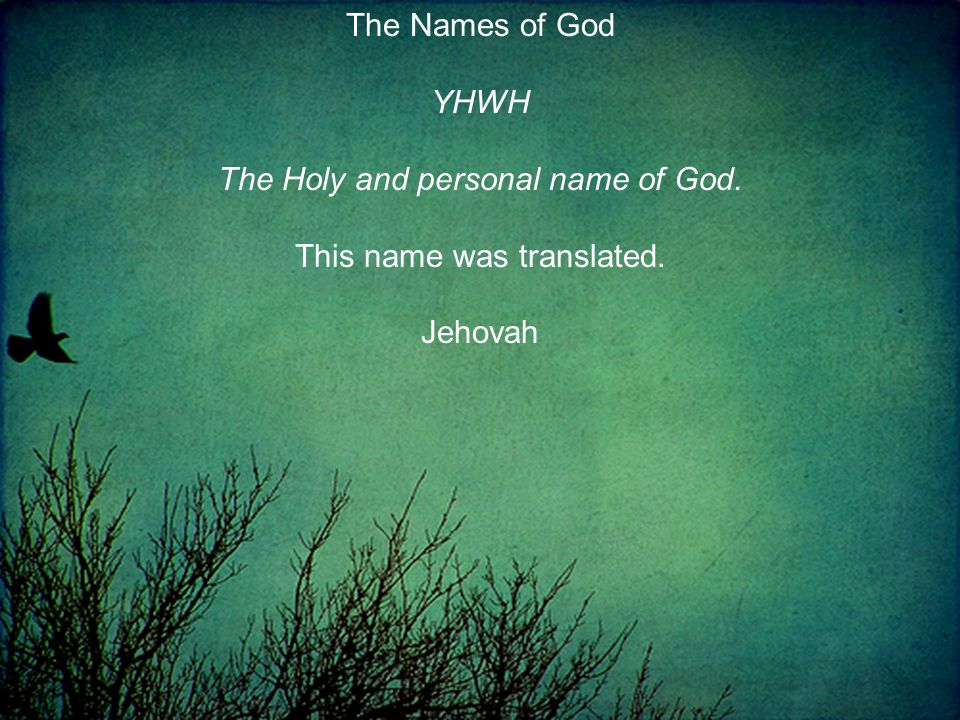 The Names of God YHWH The Holy and personal name of God. This name was translated. Jehovah
