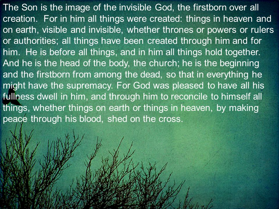 The Son is the image of the invisible God, the firstborn over all creation.