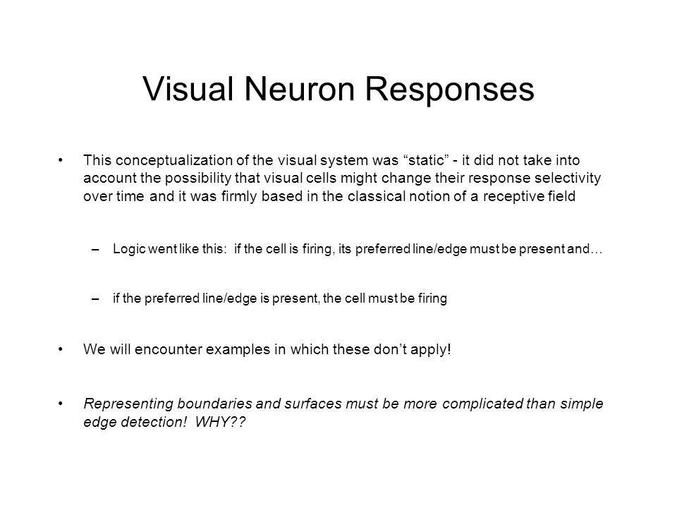 Visual Neuron Responses This conceptualization of the visual system was static - it did not take into account the possibility that visual cells might change their response selectivity over time and it was firmly based in the classical notion of a receptive field –Logic went like this: if the cell is firing, its preferred line/edge must be present and… –if the preferred line/edge is present, the cell must be firing We will encounter examples in which these don't apply.