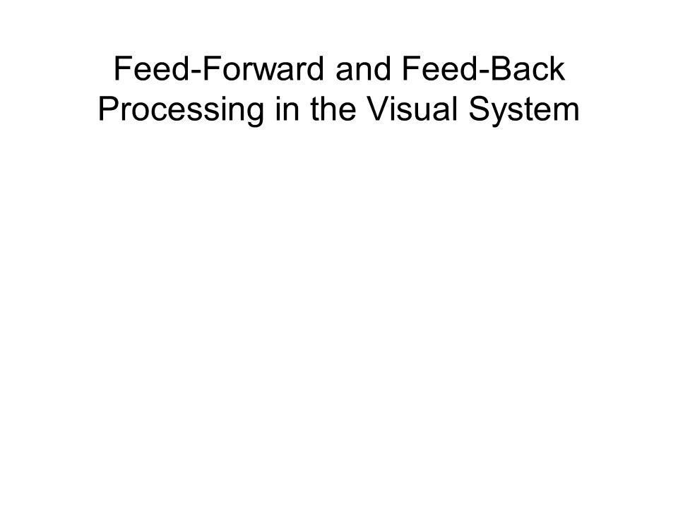 Feed-Forward and Feed-Back Processing in the Visual System