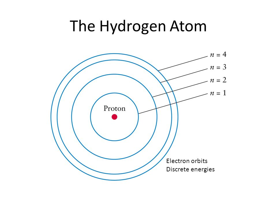 The Hydrogen Atom Electron orbits Discrete energies