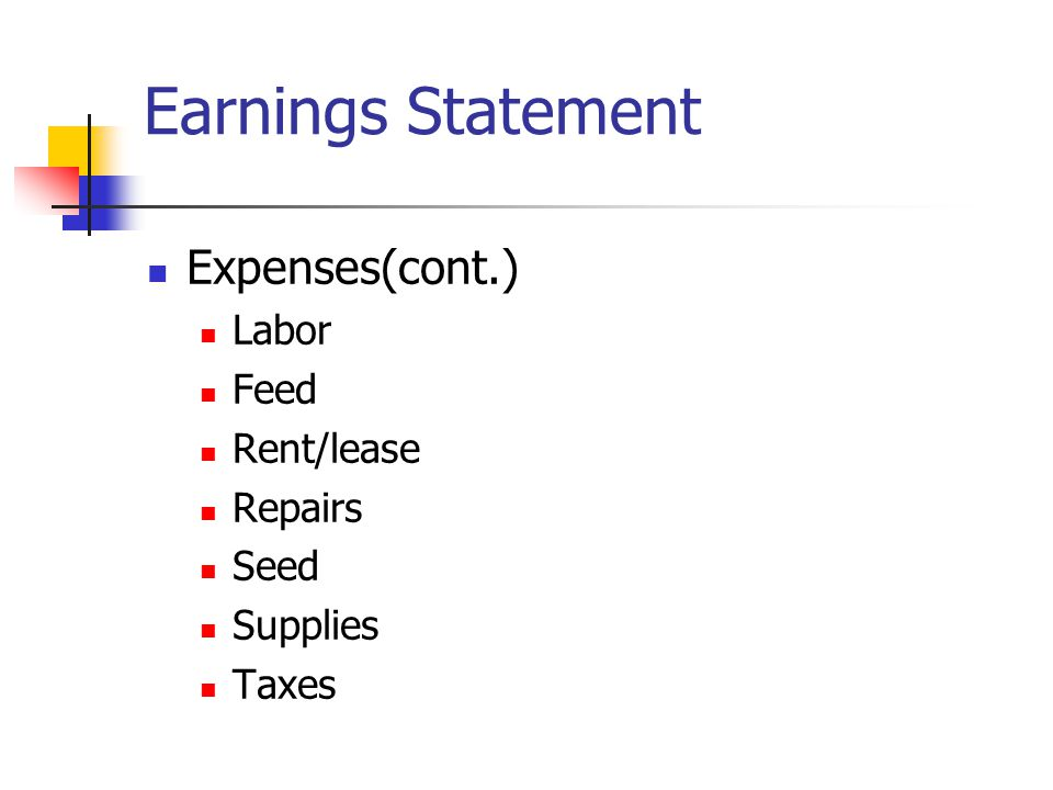 Earnings Statement Expenses(cont.) Labor Feed Rent/lease Repairs Seed Supplies Taxes