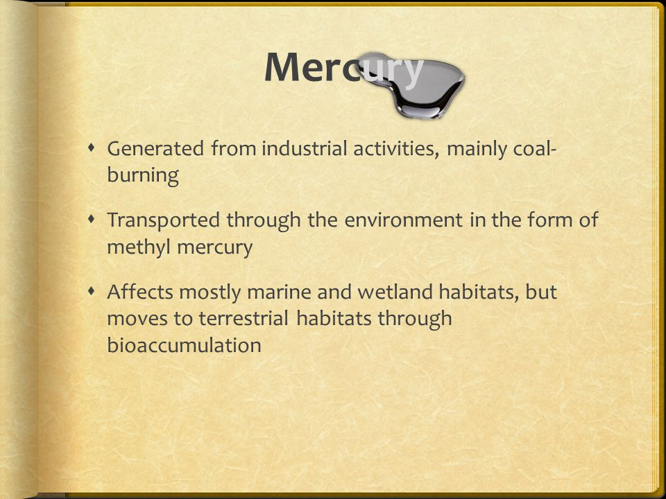  Generated from industrial activities, mainly coal- burning  Transported through the environment in the form of methyl mercury  Affects mostly marine and wetland habitats, but moves to terrestrial habitats through bioaccumulation Mercury