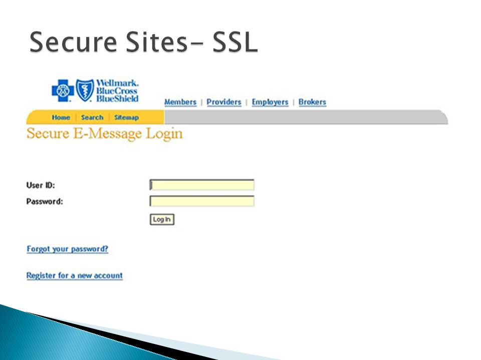  Password DOES NOT mean secure  Secure Socket Layer (SSL) ◦ Encrypts the data (credit card #'s, etc.) ◦ URL will begin with    Log Off after leaving site ◦ Why