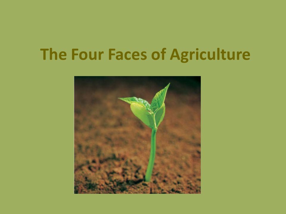 The Four Faces of Agriculture