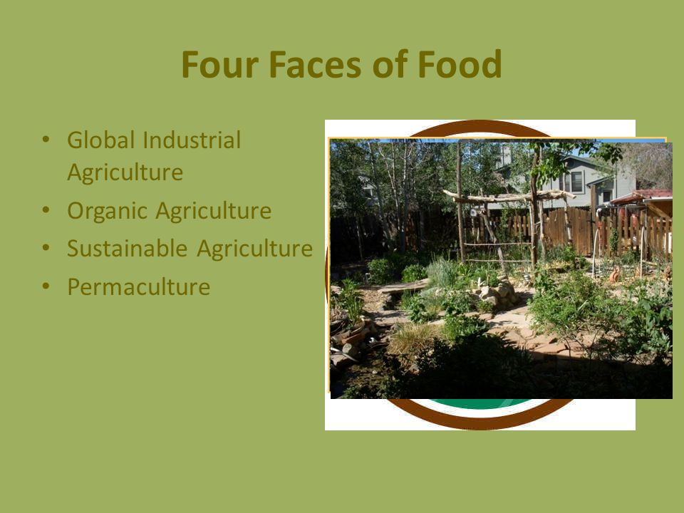 Four Faces of Food Global Industrial Agriculture Organic Agriculture Sustainable Agriculture Permaculture