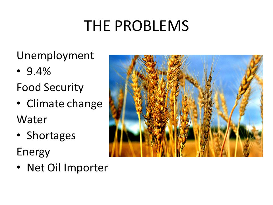 THE PROBLEMS Unemployment 9.4% Food Security Climate change Water Shortages Energy Net Oil Importer