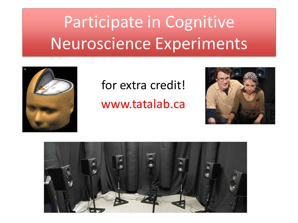 Participate in Cognitive Neuroscience Experiments for extra credit!