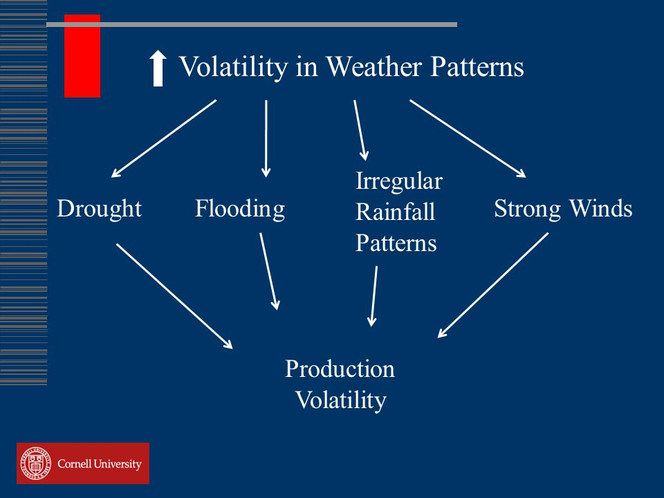 Volatility in Weather Patterns DroughtFloodingStrong Winds Production Volatility Irregular Rainfall Patterns