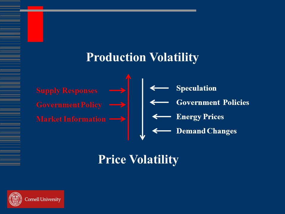 Production Volatility Supply Responses Government Policy Market Information Speculation Government Policies Energy Prices Demand Changes Price Volatility