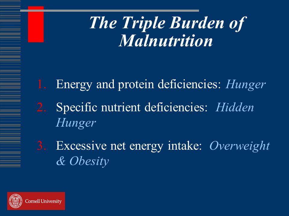 The Triple Burden of Malnutrition 1.Energy and protein deficiencies: Hunger 2.Specific nutrient deficiencies: Hidden Hunger 3.Excessive net energy intake: Overweight & Obesity