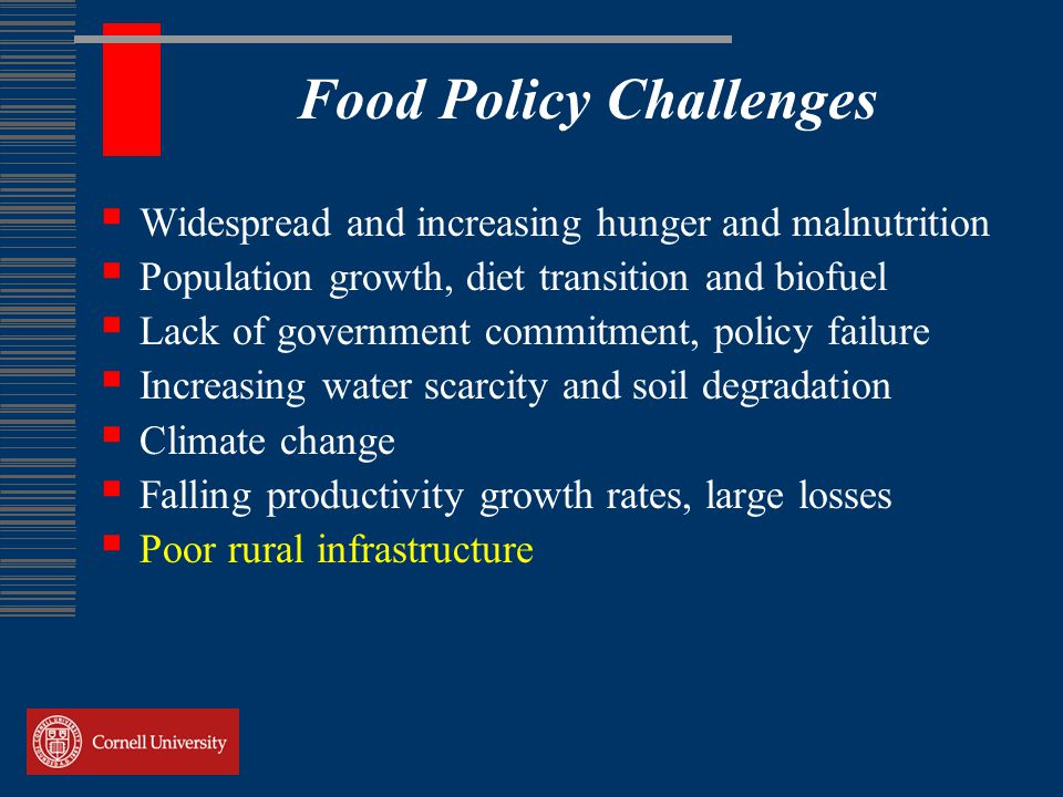 Food Policy Challenges  Widespread and increasing hunger and malnutrition  Population growth, diet transition and biofuel  Lack of government commitment, policy failure  Increasing water scarcity and soil degradation  Climate change  Falling productivity growth rates, large losses  Poor rural infrastructure