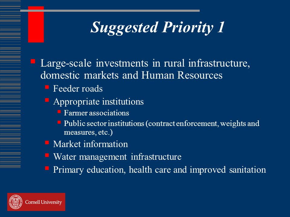Suggested Priority 1  Large-scale investments in rural infrastructure, domestic markets and Human Resources  Feeder roads  Appropriate institutions  Farmer associations  Public sector institutions (contract enforcement, weights and measures, etc.)  Market information  Water management infrastructure  Primary education, health care and improved sanitation