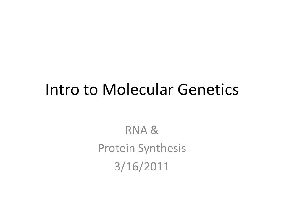 Intro to Molecular Genetics RNA & Protein Synthesis 3/16/2011