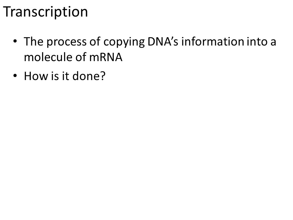 Transcription The process of copying DNA's information into a molecule of mRNA How is it done