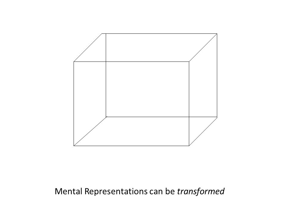 Mental Representations can be transformed