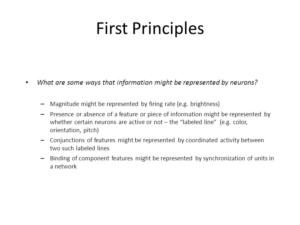 First Principles What are some ways that information might be represented by neurons.