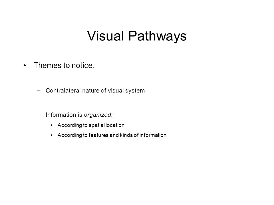 Visual Pathways Themes to notice: –Contralateral nature of visual system –Information is organized: According to spatial location According to features and kinds of information