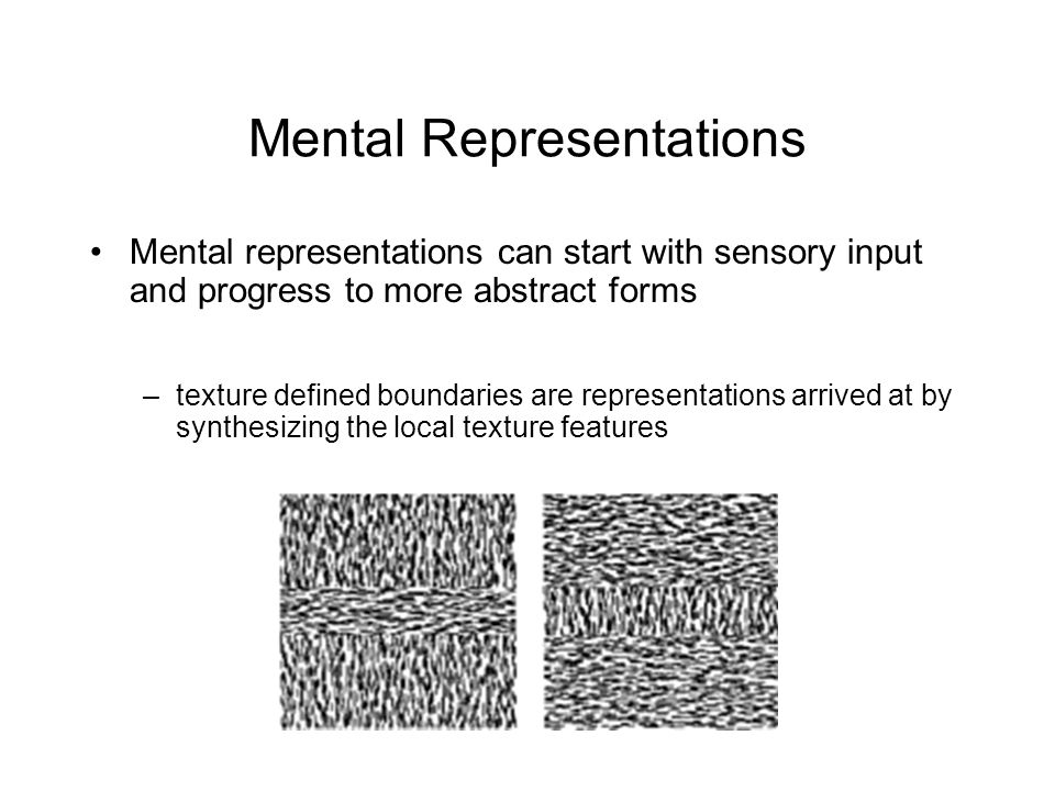 Mental Representations Mental representations can start with sensory input and progress to more abstract forms –texture defined boundaries are representations arrived at by synthesizing the local texture features