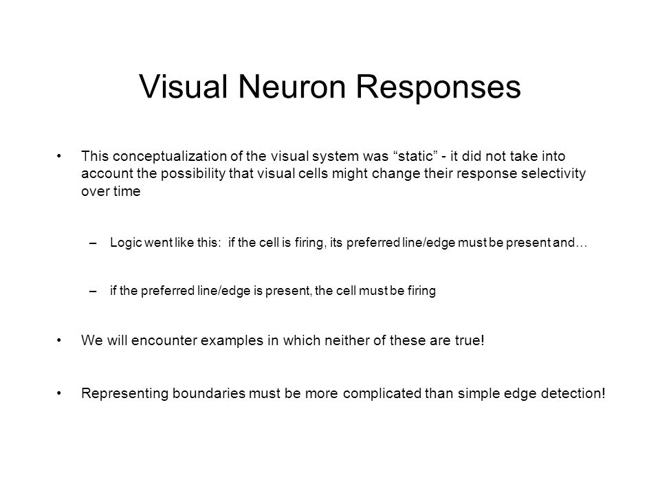 Visual Neuron Responses This conceptualization of the visual system was static - it did not take into account the possibility that visual cells might change their response selectivity over time –Logic went like this: if the cell is firing, its preferred line/edge must be present and… –if the preferred line/edge is present, the cell must be firing We will encounter examples in which neither of these are true.