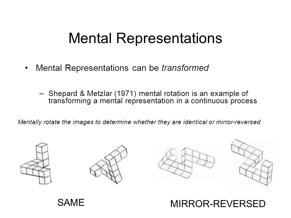 Mental Representations Mental Representations can be transformed –Shepard & Metzlar (1971) mental rotation is an example of transforming a mental representation in a continuous process Mentally rotate the images to determine whether they are identical or mirror-reversed SAME MIRROR-REVERSED