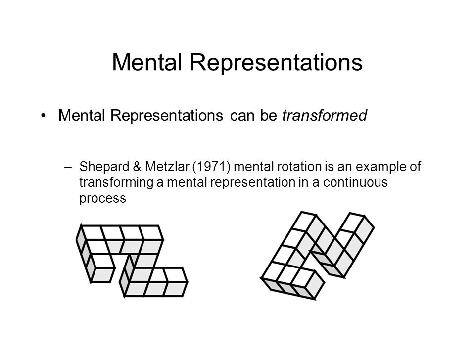 Mental Representations Mental Representations can be transformed –Shepard & Metzlar (1971) mental rotation is an example of transforming a mental representation in a continuous process