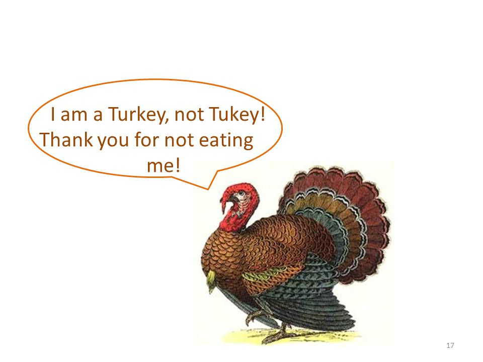 I am a Turkey, not Tukey! Thank you for not eating me! 17