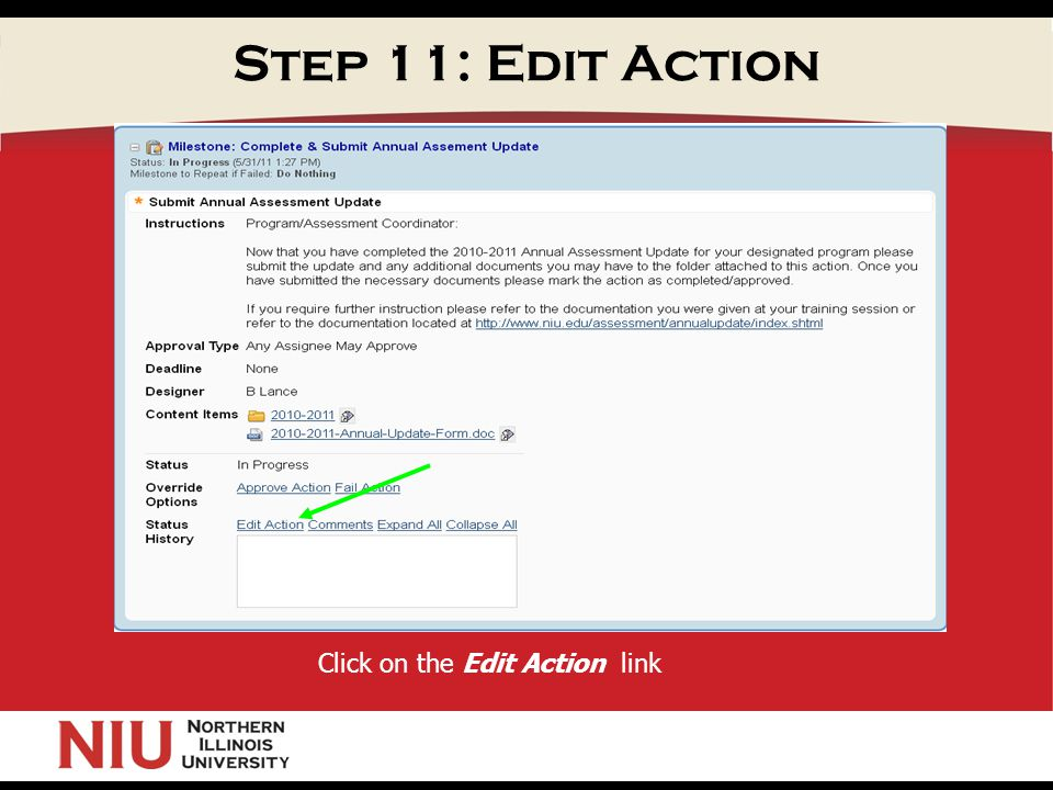 Step 11: Edit Action Click on the Edit Action link
