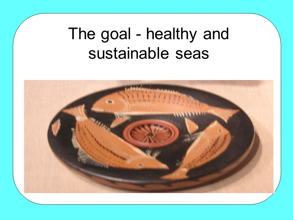 The goal - healthy and sustainable seas