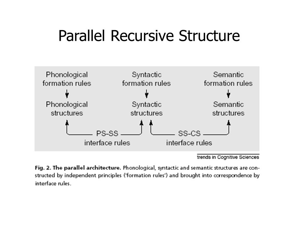 Parallel Recursive Structure