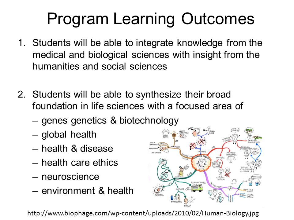 1.Students will be able to integrate knowledge from the medical and biological sciences with insight from the humanities and social sciences 2.Students will be able to synthesize their broad foundation in life sciences with a focused area of –genes genetics & biotechnology –global health –health & disease –health care ethics –neuroscience –environment & health Program Learning Outcomes