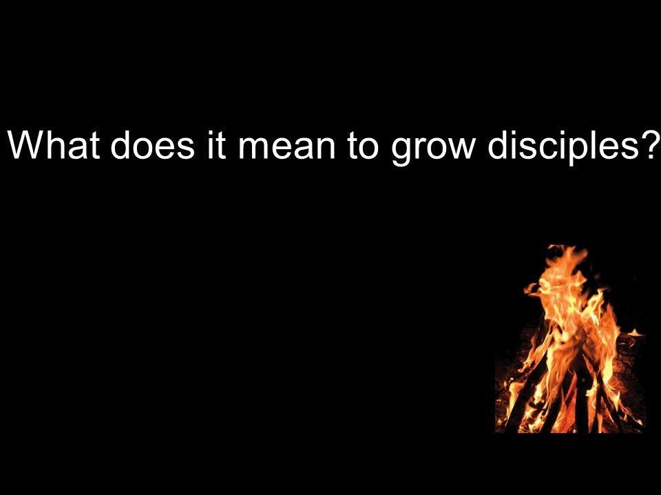 What does it mean to grow disciples