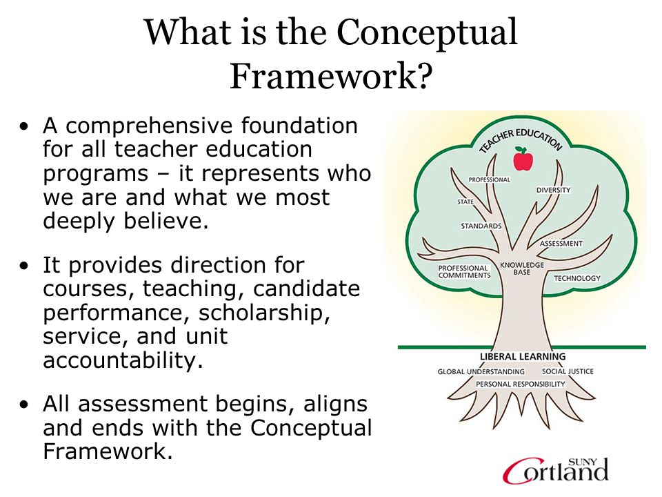 What is the Conceptual Framework.