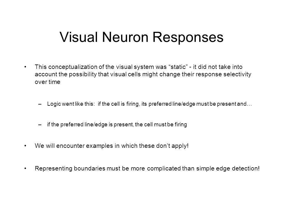 Visual Neuron Responses This conceptualization of the visual system was static - it did not take into account the possibility that visual cells might change their response selectivity over time –Logic went like this: if the cell is firing, its preferred line/edge must be present and… –if the preferred line/edge is present, the cell must be firing We will encounter examples in which these don't apply.