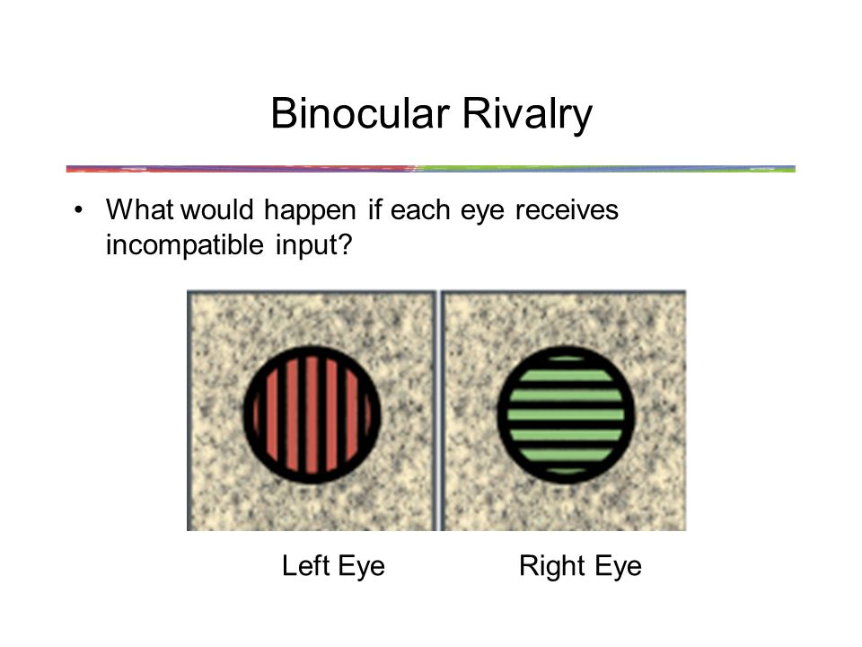 Binocular Rivalry What would happen if each eye receives incompatible input Left EyeRight Eye