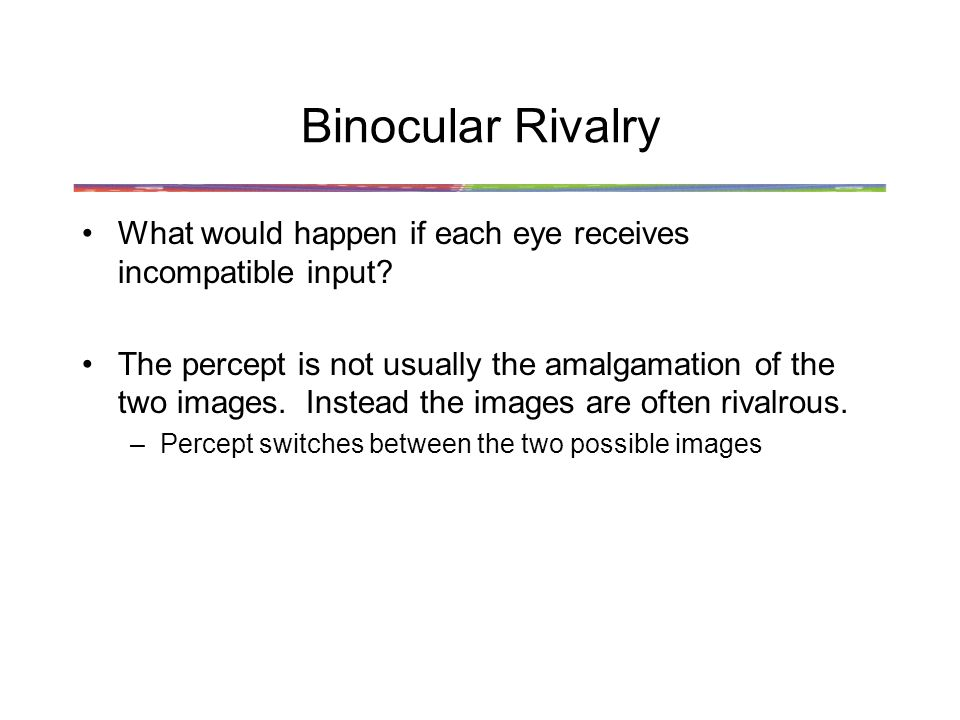 Binocular Rivalry What would happen if each eye receives incompatible input.