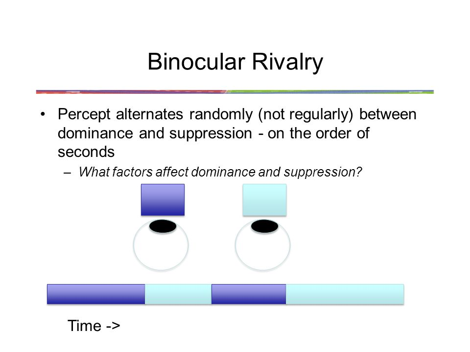 Binocular Rivalry Percept alternates randomly (not regularly) between dominance and suppression - on the order of seconds –What factors affect dominance and suppression.
