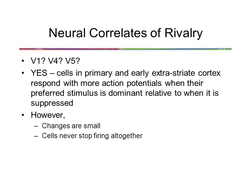 Neural Correlates of Rivalry V1. V4. V5.