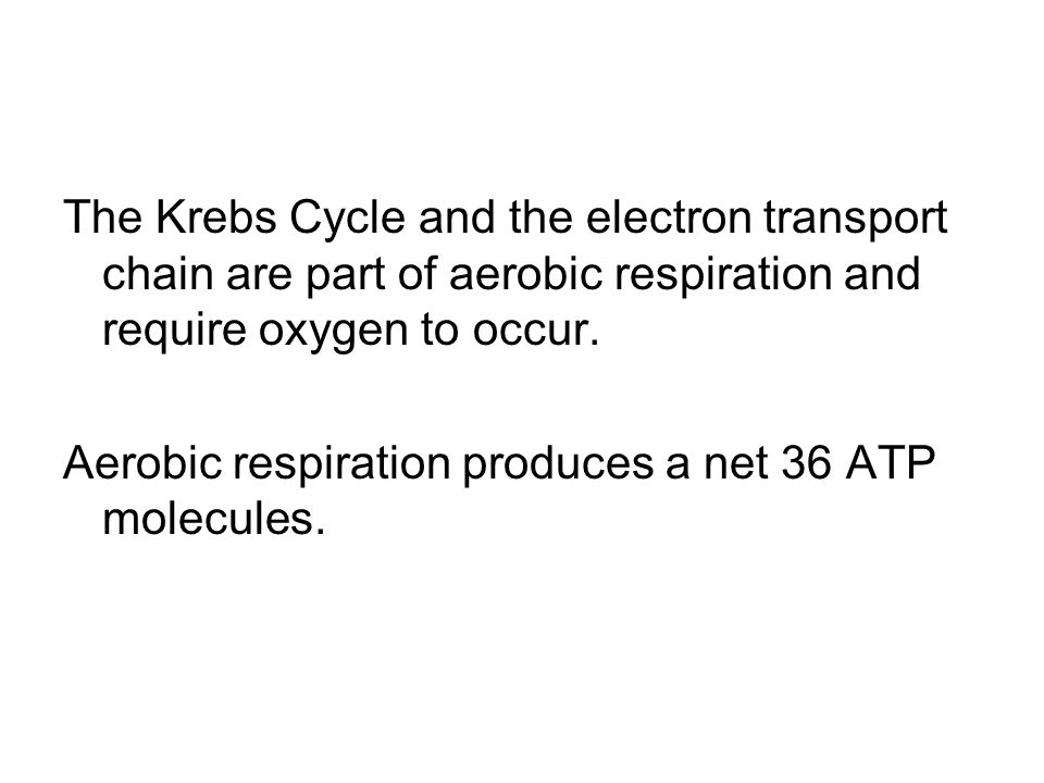 The Krebs Cycle and the electron transport chain are part of aerobic respiration and require oxygen to occur.
